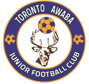 Toronto Football Club new logo (2)